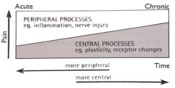 pain-gifford-graph_edited-2