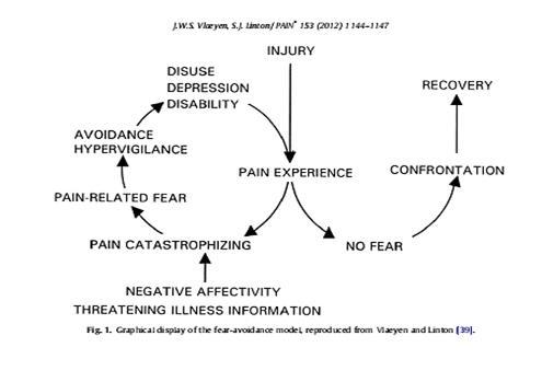 fear-avoidance-model