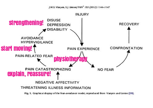 fear avoidance physiotherapy